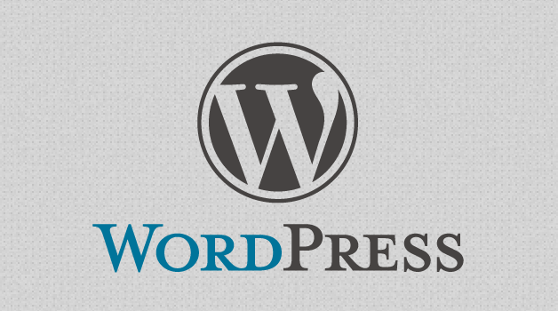 The WordPress Developer: Your Right Hand Man for Increasing Visitor Engagement and Profits